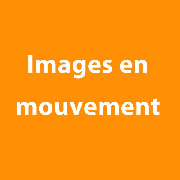 """bouton """"images en mouvement"""" à cliquer sur le site de cécile briand"""