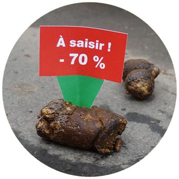 Les étiquettes pour crottes : photographie