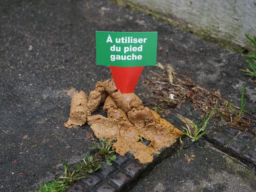 un exemple d'étiquette plantée dans une crotte