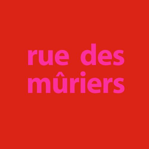 "logo carré de notre chaine youtube ""ruedesmuriers"""